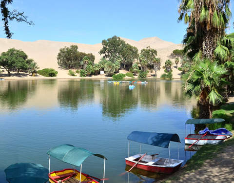 Full Day Ica - City Tour + Buggy + Sandboarding (Desde Ica)