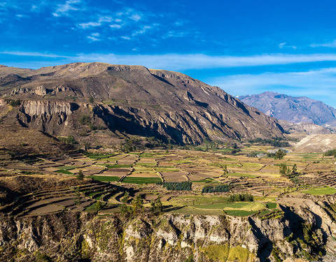 Colca Canyon Tour Full Day