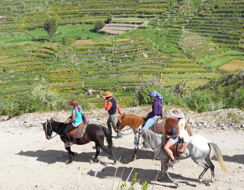 Paseo a Caballo en la Campiña Arequipeña