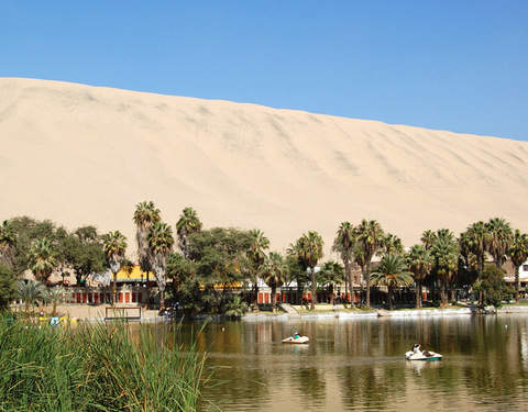 Tour Huacachina + Buggy & Sandboarding