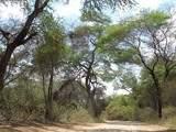Foto de 4d/3n la Ruta Moche la Libertad y Lambayeque