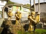 Foto de Circuito Turistico Imperio Yarowilca
