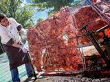 Foto de Chancho Al Palo Warmy + Huando + Viñedos (Desde Huaral)
