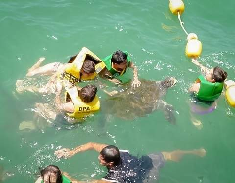 2d / 1n Tour Playas del Norte + Swim with Turtles + 2 * Hostel
