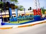 Foto de 2d/1n Tour Playas del Norte + Nado Con Tortugas + Hostal 2*