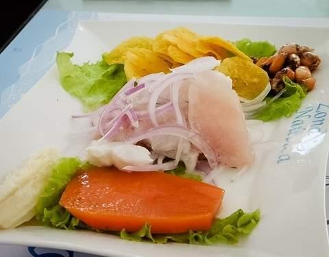 3d/2n Tour Playas del Norte + Nado Con Tortugas + Hostal 2*
