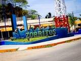 Foto de 3d/2n Tour Playas del Norte + Nado Con Tortugas + Hostal 2*