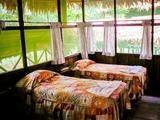 Habitación doble en Iquitos 4 Días / 3 Noches Asombrosa Amazonía