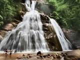 Foto de Selva Central Express