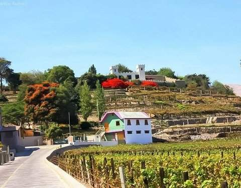 Discover Moquegua and Torata