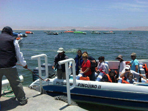 Full Day - Paracas and Ica (Private - Daily Departures)