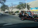 Foto de Full Day - Paracas e Ica (Privado - Salidas Diarias)