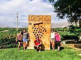 Foto de Full Day Ballestas + City Tour Ica + Buggie (Desde Ica)