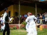 Foto de Tour Caballos de Paso y Marinera