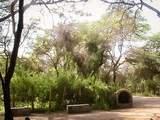 Foto de Lambayeque - Bosques y Museos