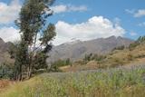 Foto de 3d/2n Huaraz + Transporte