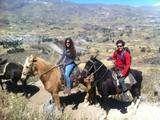 Foto de 2d/1n Cañón del Colca - Tour a Caballo