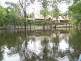 Foto de Iquitos: Río Amazonas y Sus Atractivos Selváticos