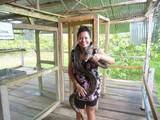 Foto de Paquete Mapacho Amazónico Iquitos