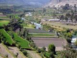 Foto de City Tour y Miradores - Arequipa