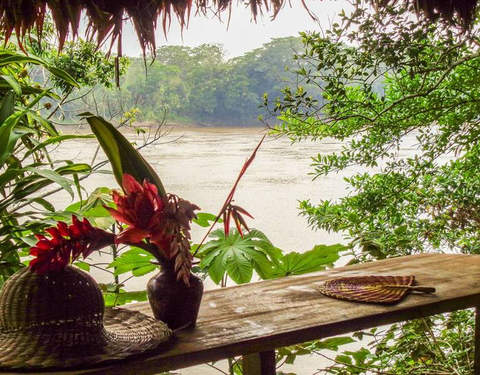 Tambopata - Magic and Nature