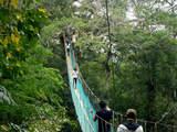 Foto de Tambopata - Magia y Naturaleza