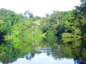 Foto de Full Day Iquitos - Río + Baño de Florecimiento