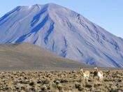 Foto de Colca 2d/1n - Terminando en Puno