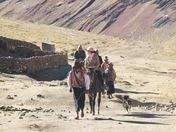 Foto de La Montaña de Colores - Vinicunca