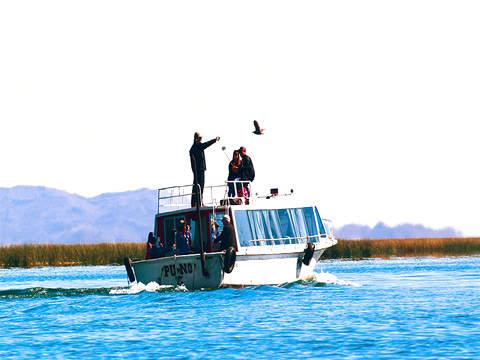 Pacha Titicaca Premium (Speed Boat)