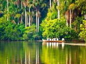 Foto de Tambopata y Lago Sandoval - 4d/3n