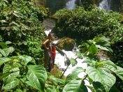 Foto de Full Day - Catarata San Miguel