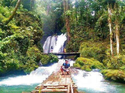 Full Day - Tingo María National Park (Waterfalls)