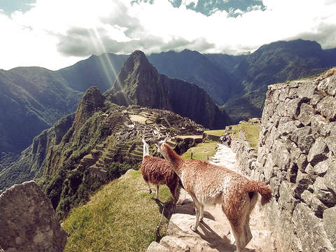 Full Day Machu Picchu Experience