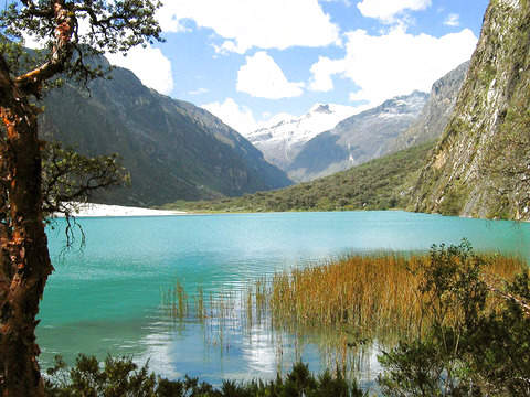 Huaraz: Full Day - Callejón de Huaylas / Laguna de Llanganuco