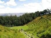 """Foto de Trekking al """"Bosque Dorado de los Incas"""""""