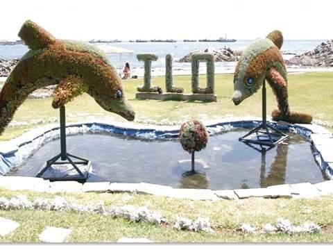 Coastal Tour: Tacna - Ilo