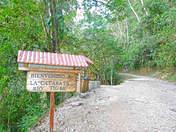 Catarata Rio Tigre