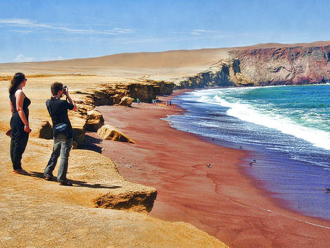 Paracas 2 Days - 1 Night