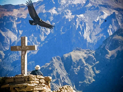 Colca Canyon + Flight of the Condor - Finishing in Puno