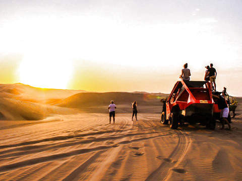 Full Day Paracas & Huacachina