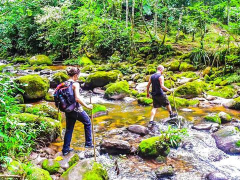 Trekking Reserve Cordillera Escalera / Alto Shilcayo