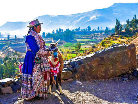 Colca Canyon Tour - Full Day