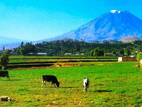 Arequipa 3 Days - City Tour + Colca + Sillar Route