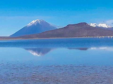 Tour a la Reserva Nacional de Salinas y Aguada Blanca