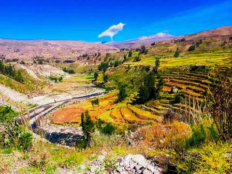 Arequipa y los Cañones más Profundos del Mundo