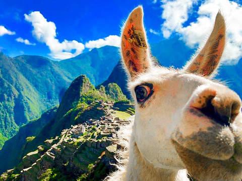 Lo Mejor del Perú en 15 Días