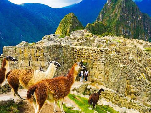 Lares Trek to Machu Picchu - 4d/3n
