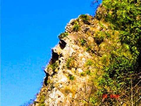 Tour la Ruta del Vino + Baños Chimú