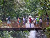 Puente colgante en Río Tigre